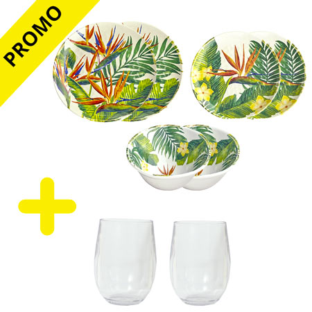 "Pack melamine crockery ""Exotic flowers"" / glasses at -50%"