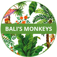 Bali's Monkeys Theme Melamine tableware