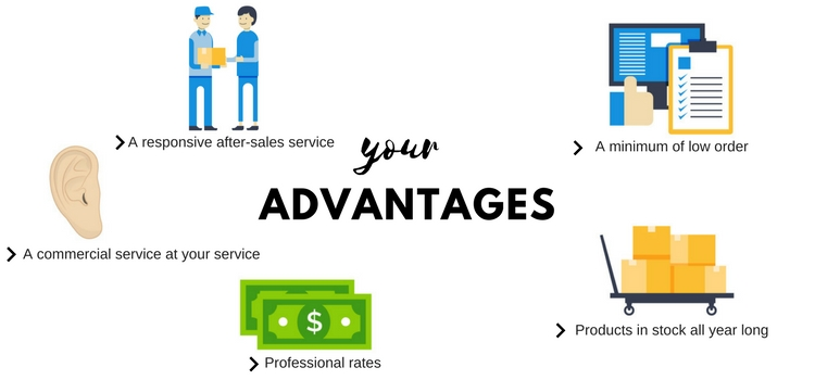 Avantages : responsive after-sales services, a minimum of low order, a commercial service at your service, professional rates, protucts in stock all year long