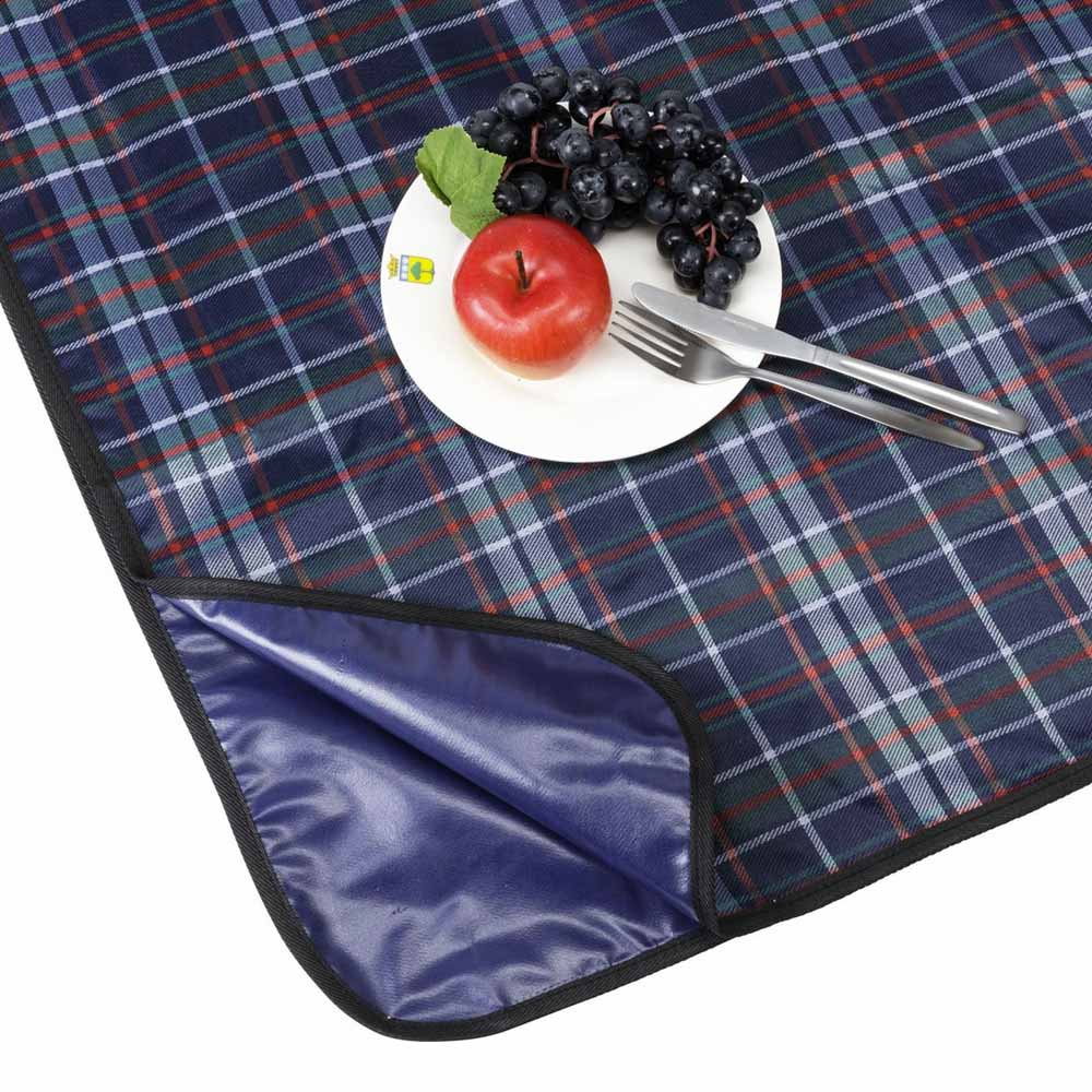 blue plaid picnic blanket. Black Bedroom Furniture Sets. Home Design Ideas